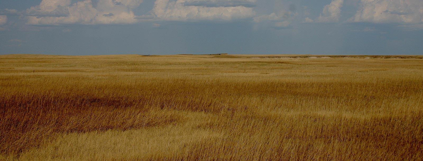 1600x610_prairies3